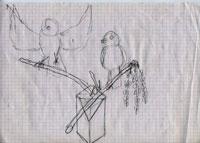 bird038.jpg