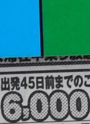 NIKON 1600 JPG.jpg